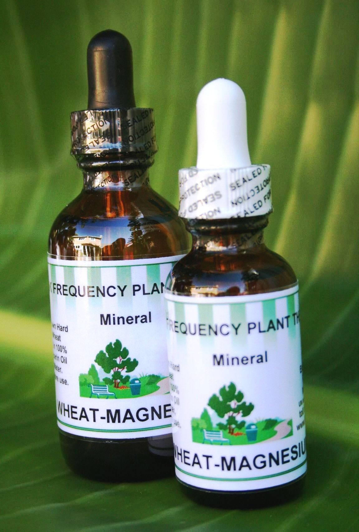 Wheat-Magnesium Vitamin & Mineral - 1oz