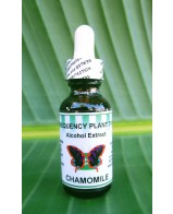 Chamomile Alcohol Extract - 1 oz