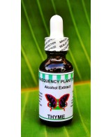 Thyme Alcohol Extract - 1oz