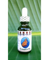 Creativity Rescue Formula - 1oz