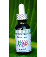 Anise Single Herb - 1 oz
