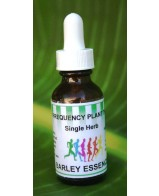 Barley Essence Single Herb - 1 oz