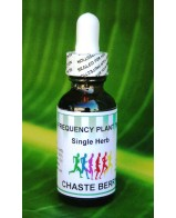 Chaste Berry (Vitex) Single Herb - 1 oz