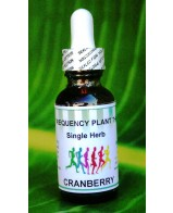 Cranberry Single Herb - 1oz
