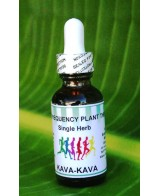 Kava Kava Root - 2oz