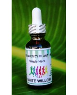White Willow Bark Single Herb - 2oz